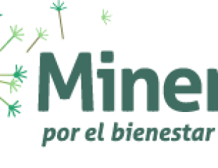 Stories.Fotos Pm.Mineros.logo Minerosnsp 717